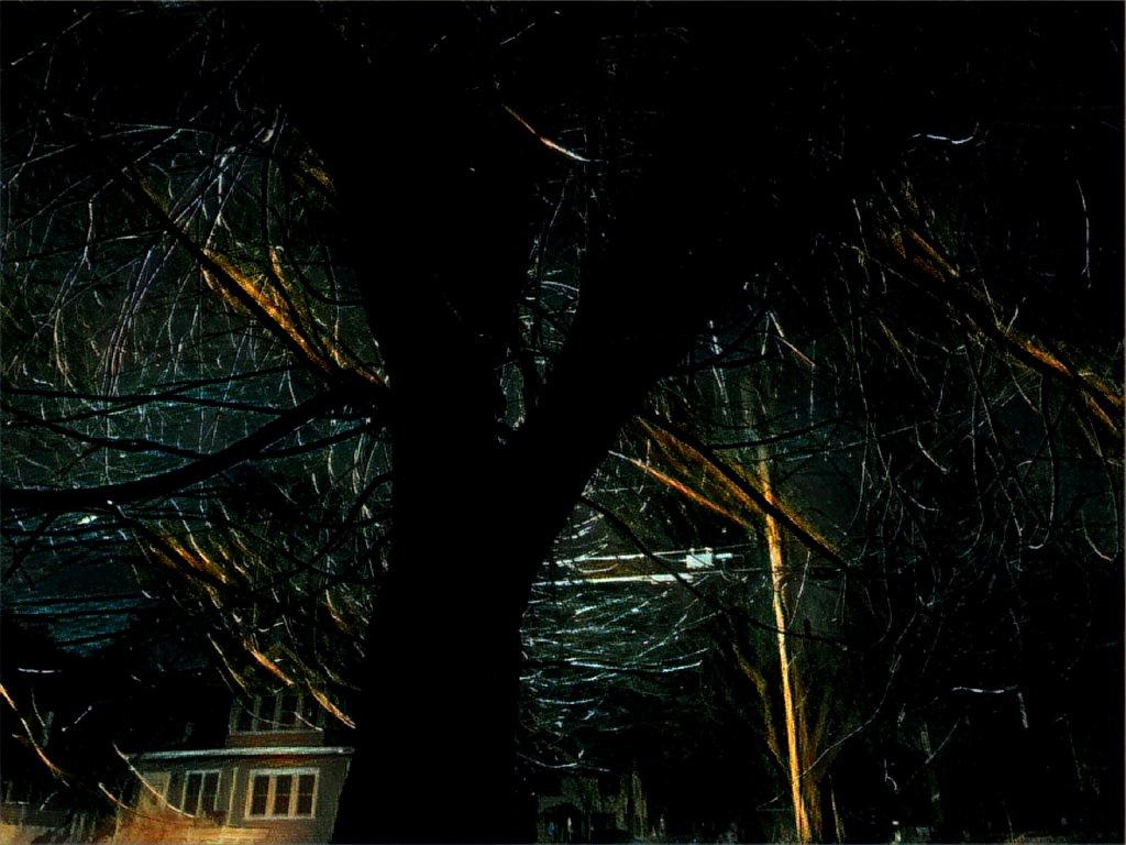 Tree Variation